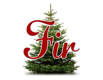 Fir Tree - 10% off all online orders*